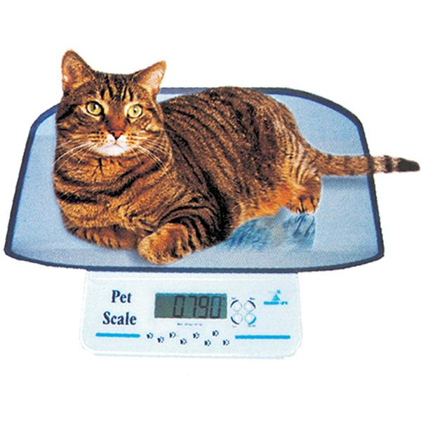 Bilancia veterinaria per animali domestici digitale con for Piccoli piani domestici vittoriani